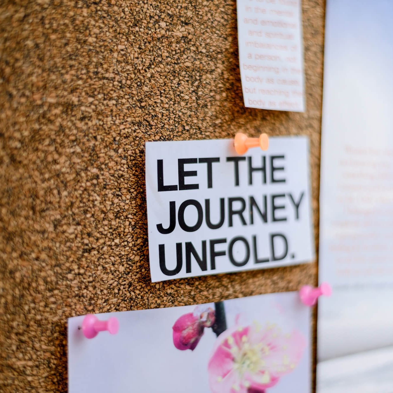 Let the Journey Unfold